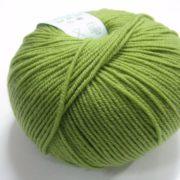 Sea Green 22036