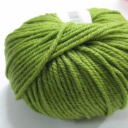 Lime 300502